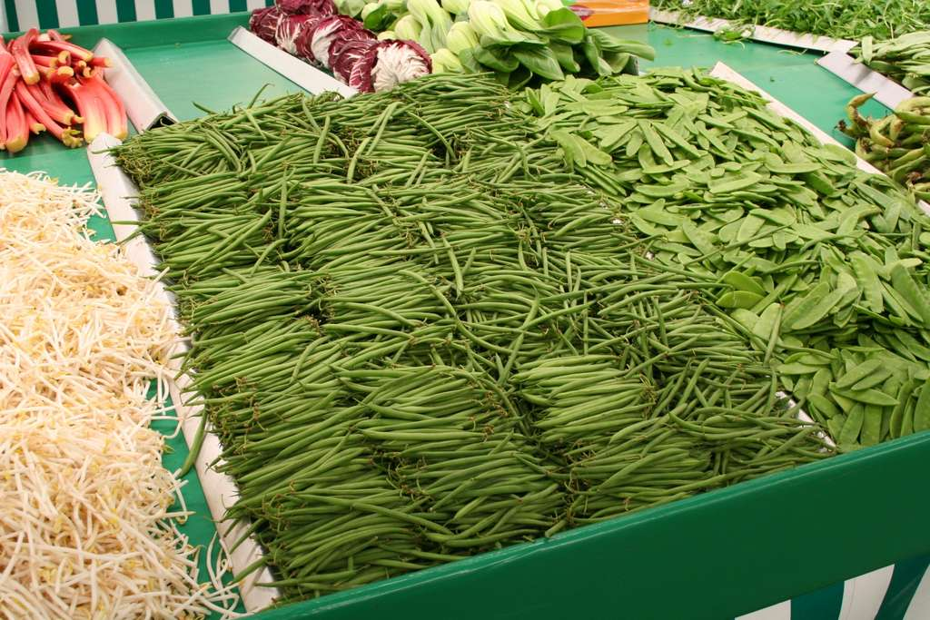 Haricots verts et pois mangetout ou pois gourmands. © Spedona, Wikimedia Commons, GNU, CC by-sa 3.0