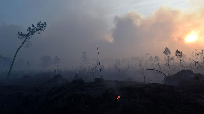 Situation très inquiétante en Gironde où plusieurs incendies sévissent - Le Figaro