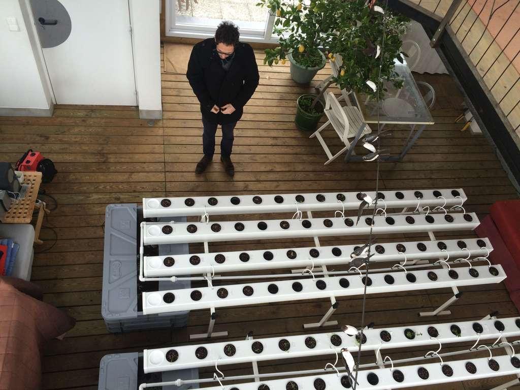 Avec Aéromate, l'agriculture urbaine devient réalité… sur les toits de Paris
