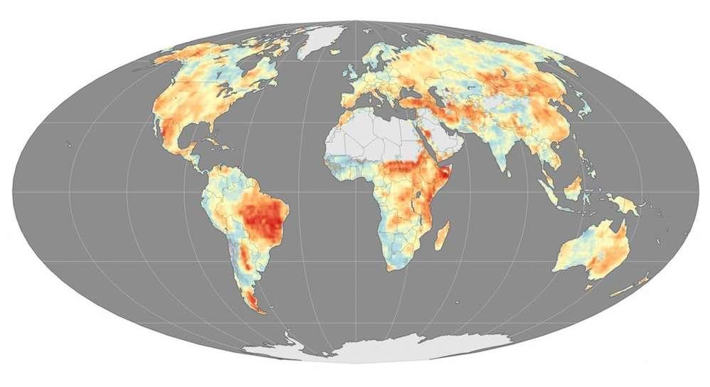 Incendies de forêt : des saisons plus longues et plus fréquentes