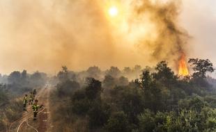 Incendie de Saint-Pons-de-Mauchiens: Le feu est fixé mais il peut reprendre avec le vent violent - 20minutes.fr