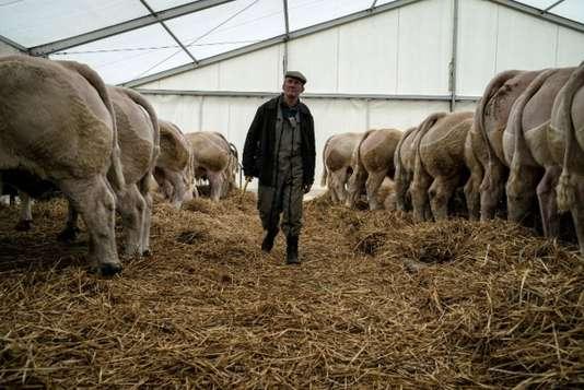 Emmanuel Macron reçoit à l'Elysée un monde agricole en crise
