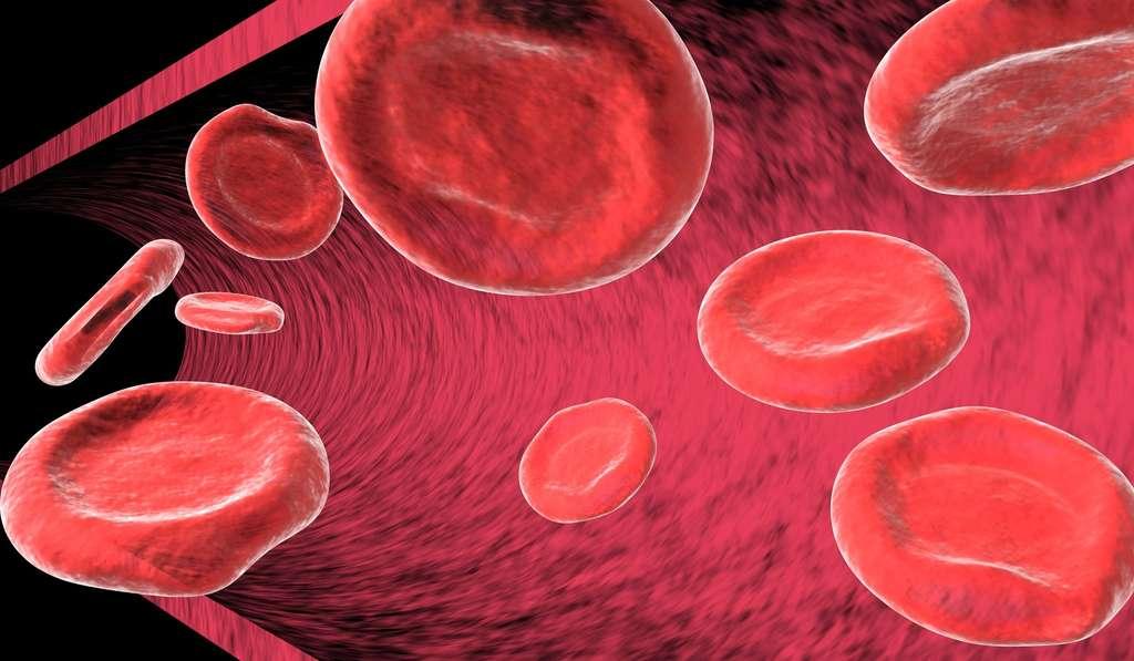 Vampires : une maladie du sang à l'origine du mythe ?