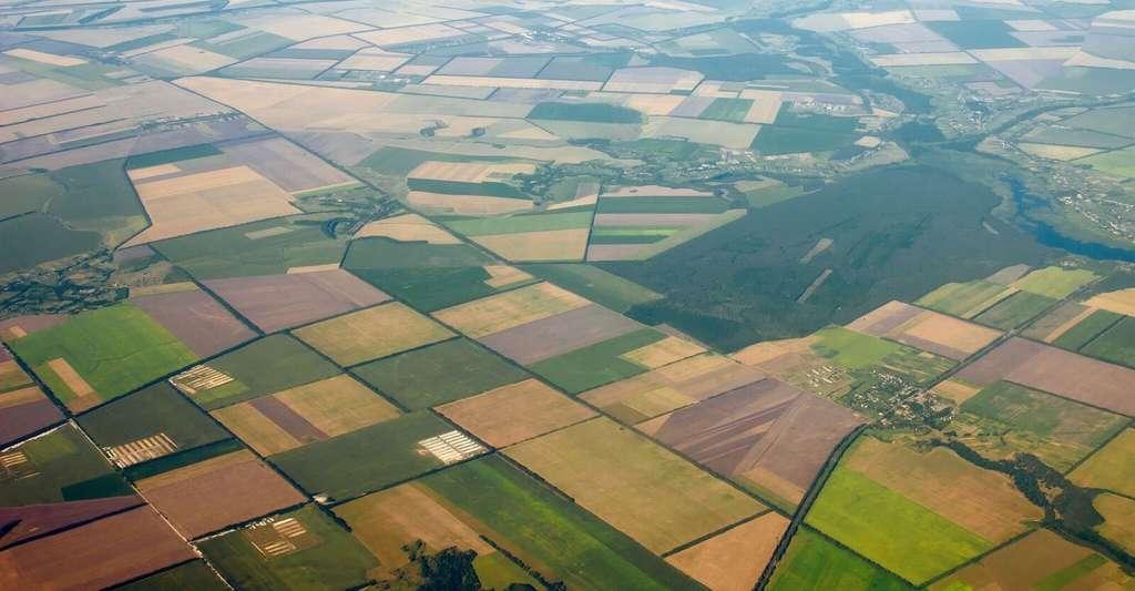 Dégradation des sols : les scientifiques tirent la sonnette d'alarme