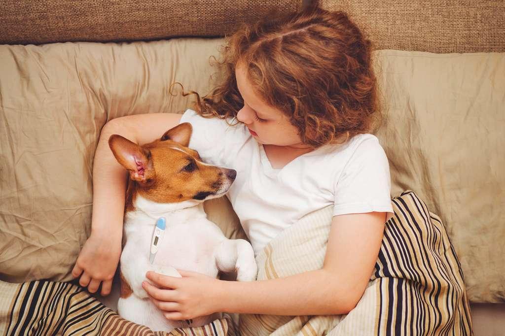 Nos chiens à l'origine de la prochaine pandémie de grippe ?