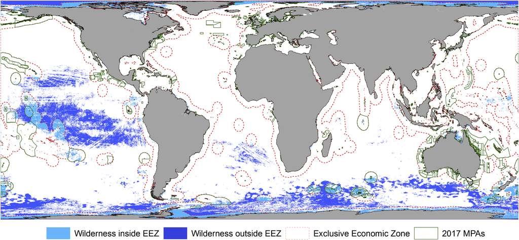Océans : les zones marines sauvages ont quasiment disparu