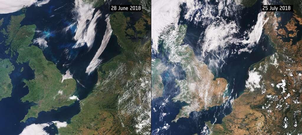 L'été 2018 est le deuxième plus chaud de l'histoire de France