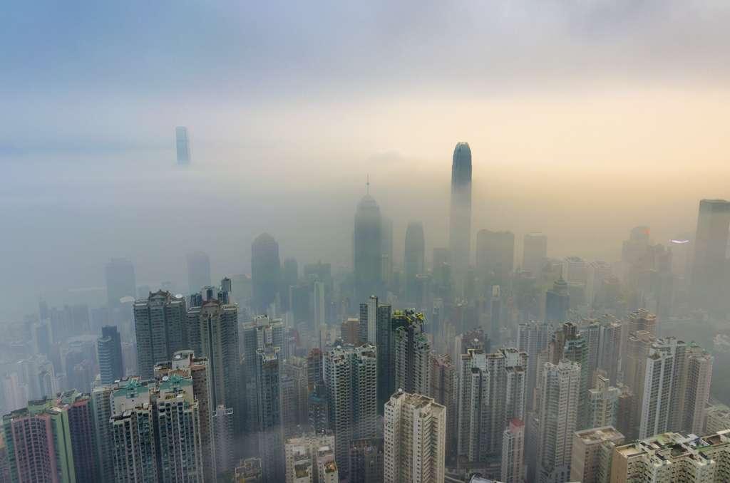 La hausse du CO2 atmosphérique réduira la qualité des aliments de base