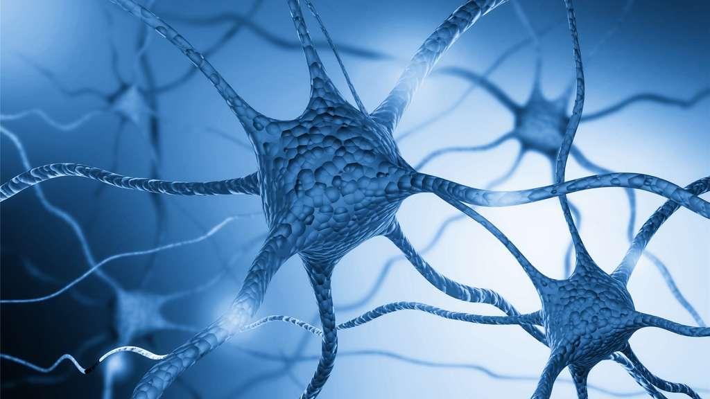 Parkinson : des cellules souches greffées dans le cerveau d'un patient
