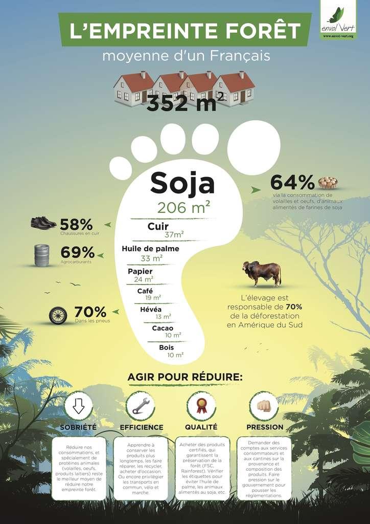 Déforestation : chaque Français détruit l'équivalent de 352m² de forêts