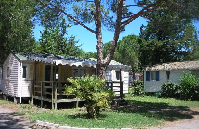 Camping L'Eden 5* à Le Grau-du-Roi dans l'Hérault