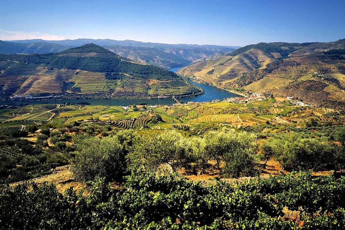 Croisière l'or du Douro Portugal TUI