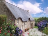 Abritel Location Bretagne - Le Gohic Cottage L'ECURIE Piscine chaufee, Patio et barbecue